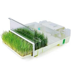 """EasyGreen MicroFarm™ är en """"örtkuvös"""" som du snabbt och lätt odlar skott och groddar Vete"""