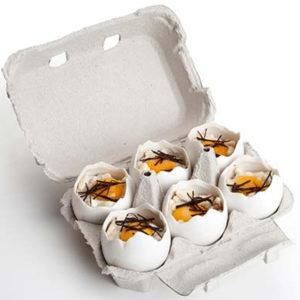 Knäckt ägg 10-pack från 100%chef - Ett unikt sätt att servera Här i äggkartong